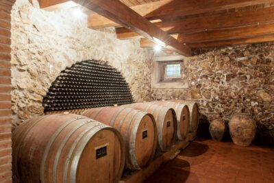 wine tour sant'arsenio